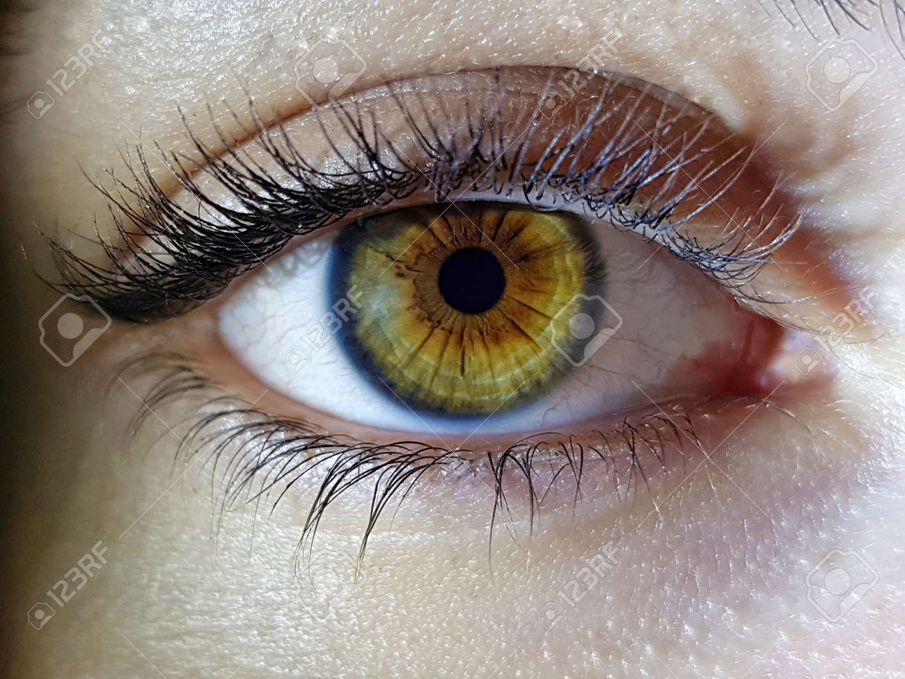 A beautiful macro closeup shot of a female human's deep eyes - 157620065