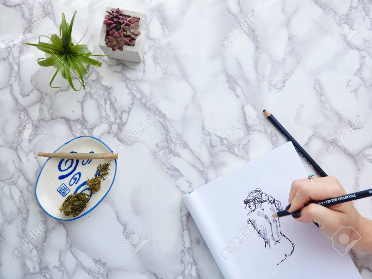 Woman S Hand Drawing Illustration With Pencil Succulents And Stock Photo Picture And Royalty Free Image Image 156541570