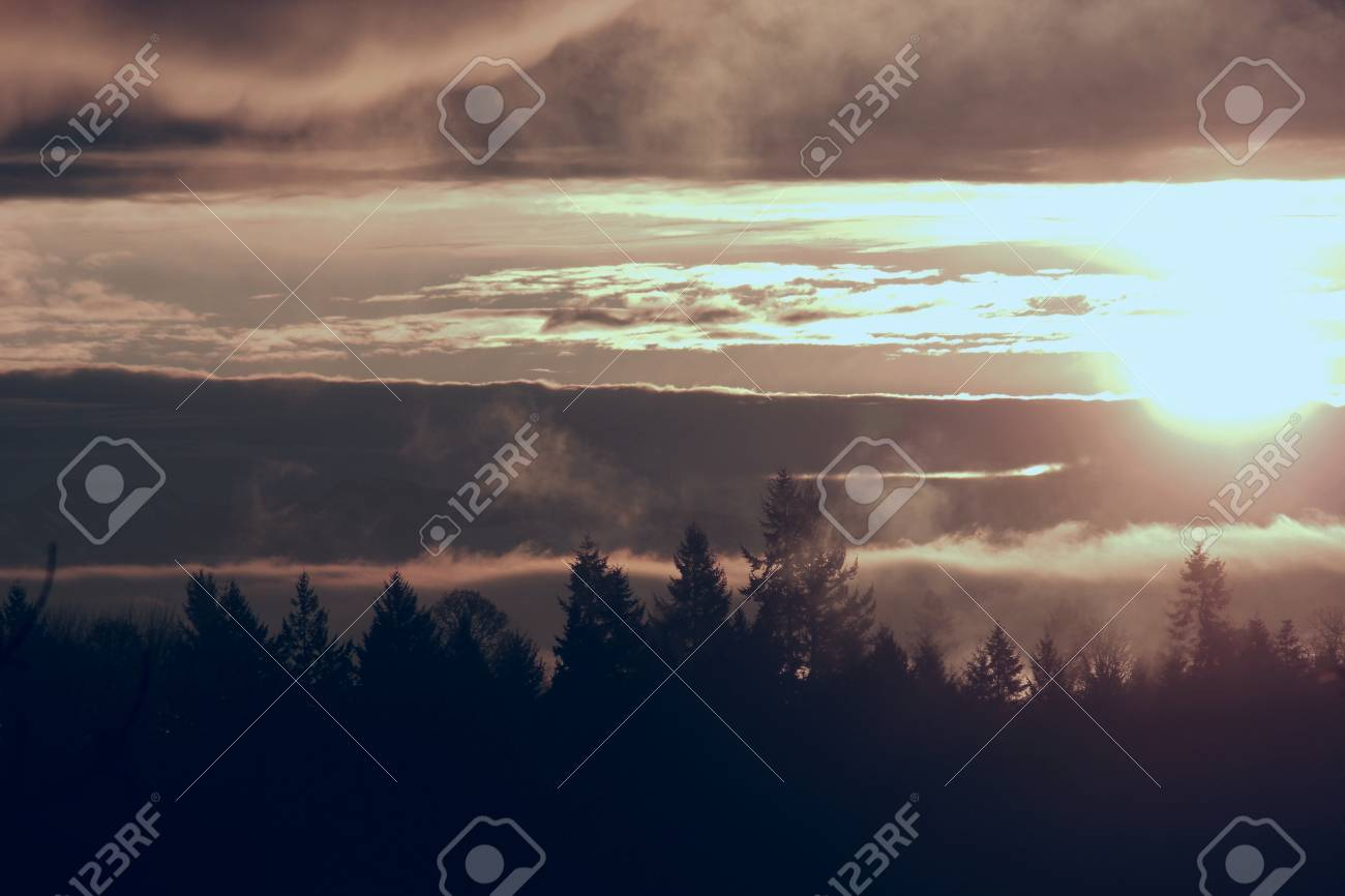 Glorious sunrise over a beautiful silhouetted tree line showing a beautiful display of sun, clouds and fog Stock Photo - 17153922