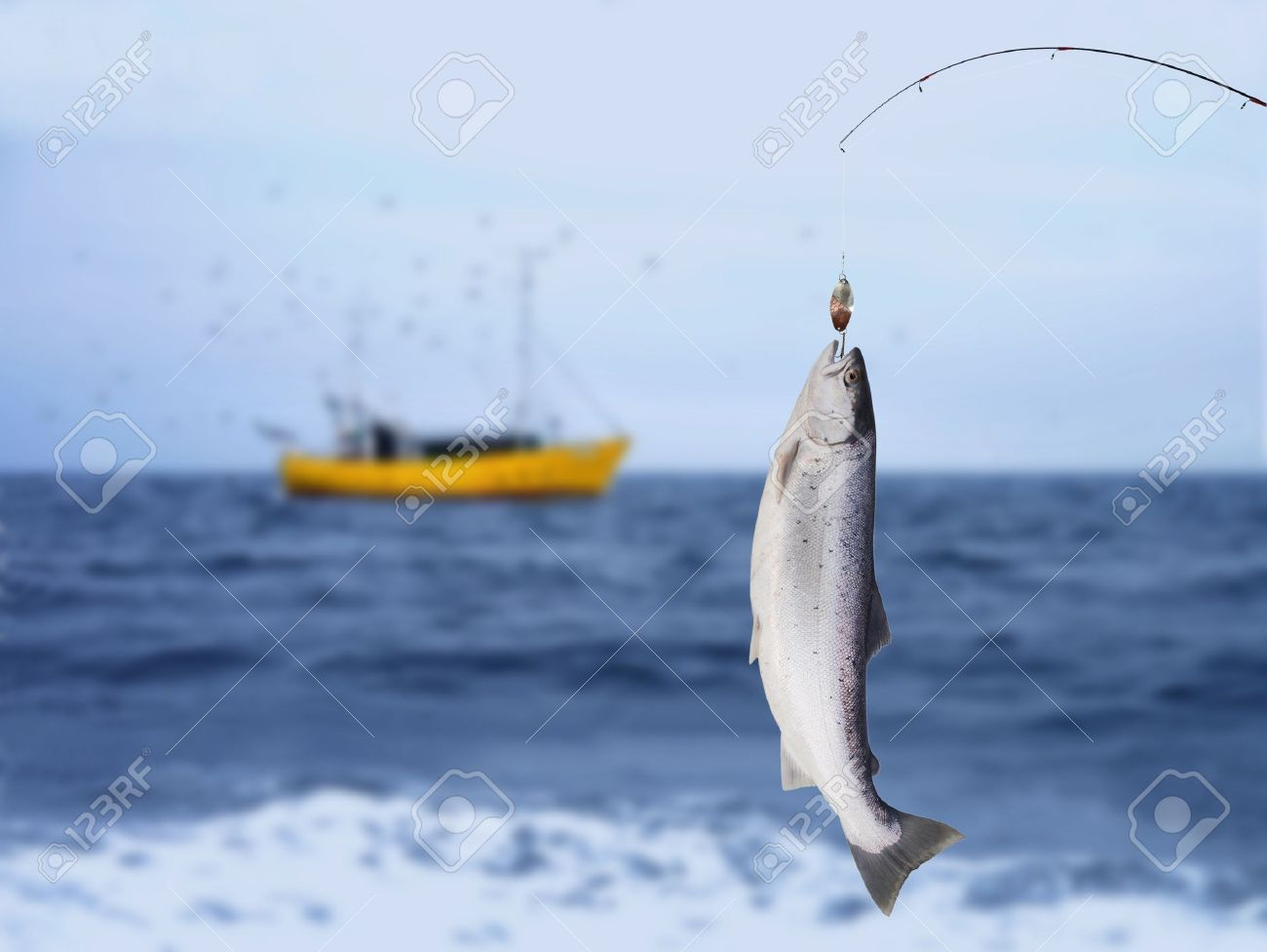 salmon on fishing-rod on background of sea Stock Photo - 17389304
