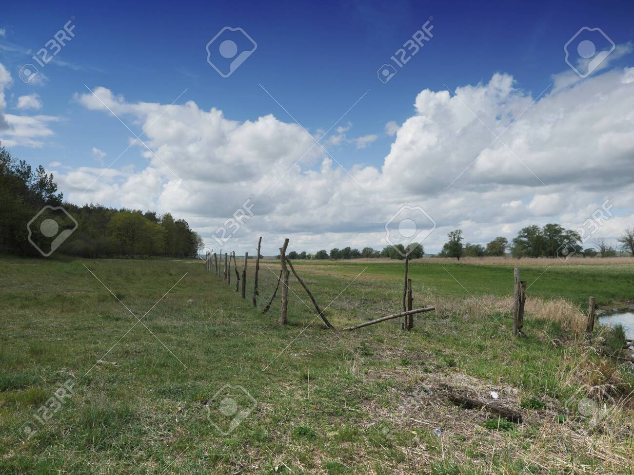 fenced empty pasture against the sky - 146057688