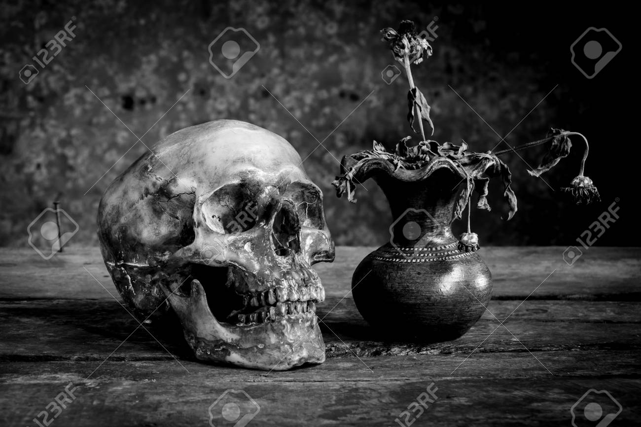 Still life black and white photography with human skulls on wood table stock photo 62190262