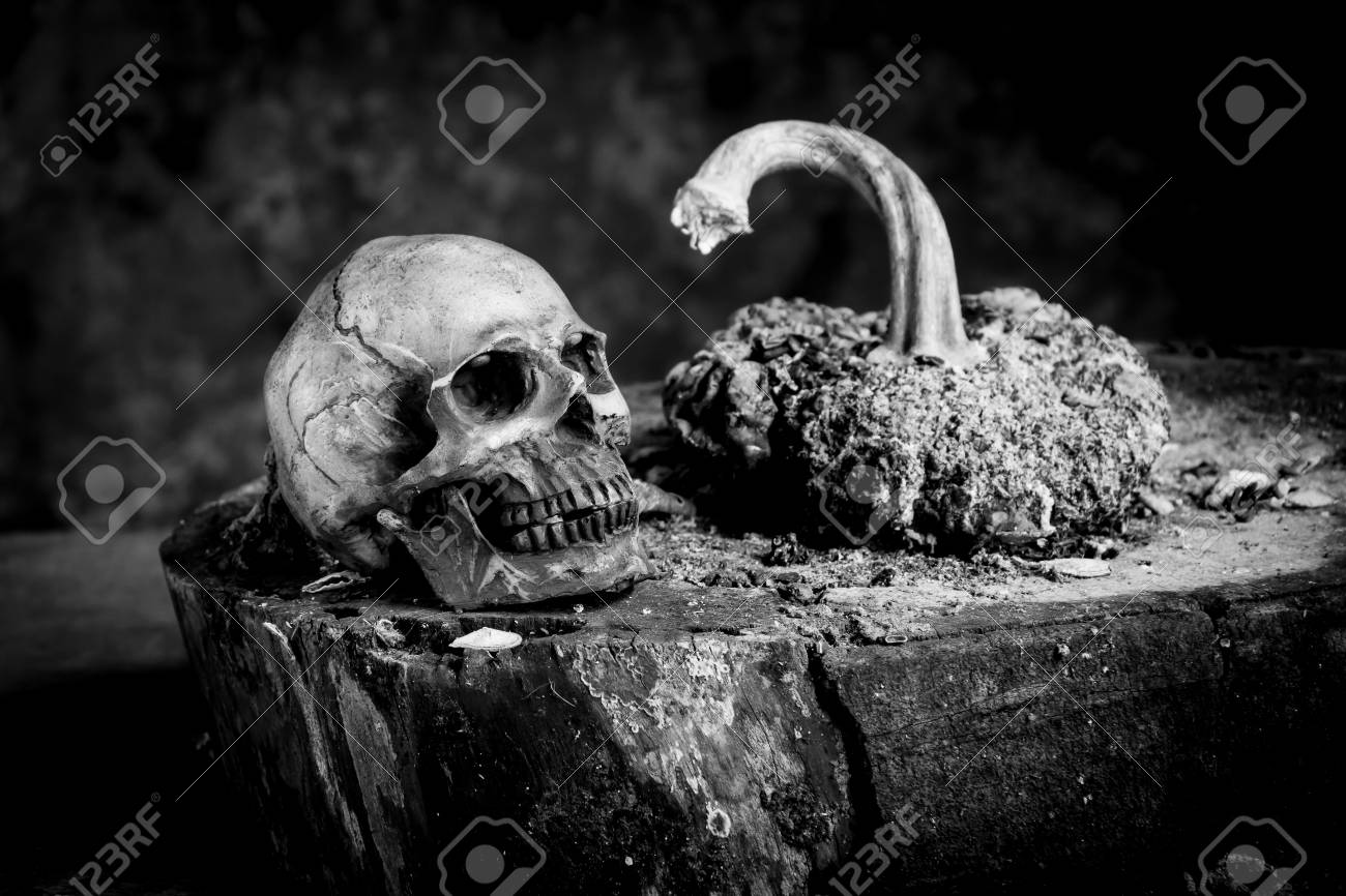 Still life black and white photography with human skulls on wood table stock photo 62190272