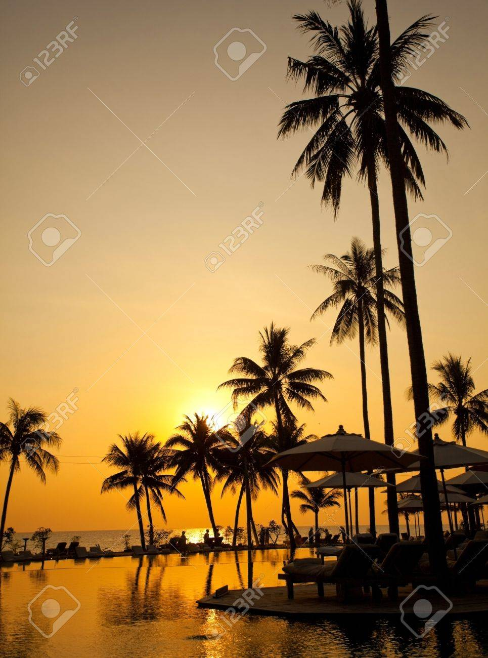 Palm forest silhouettes on sunrise Stock Photo - 9424787