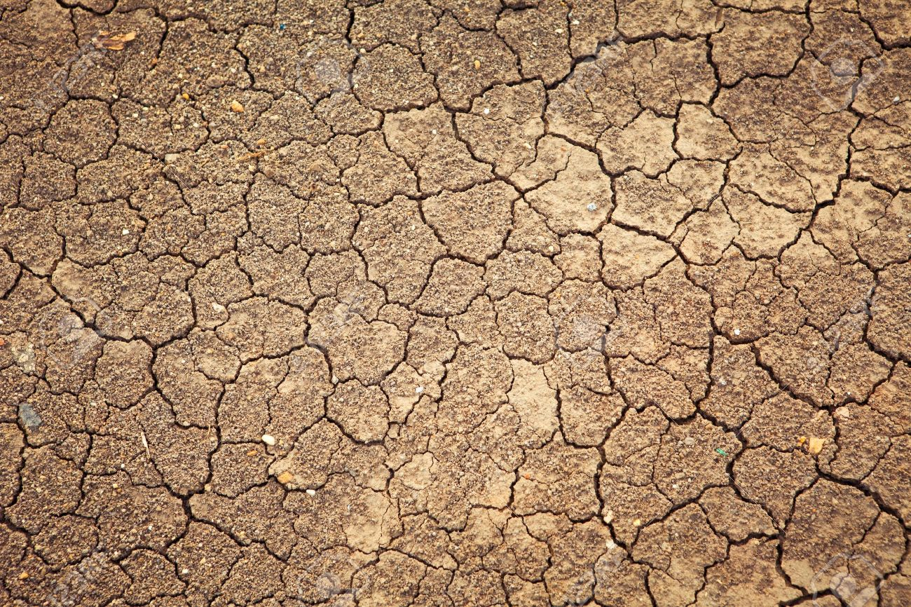 Dry cracked earth background, clay desert texture Stock Photo - 13830604