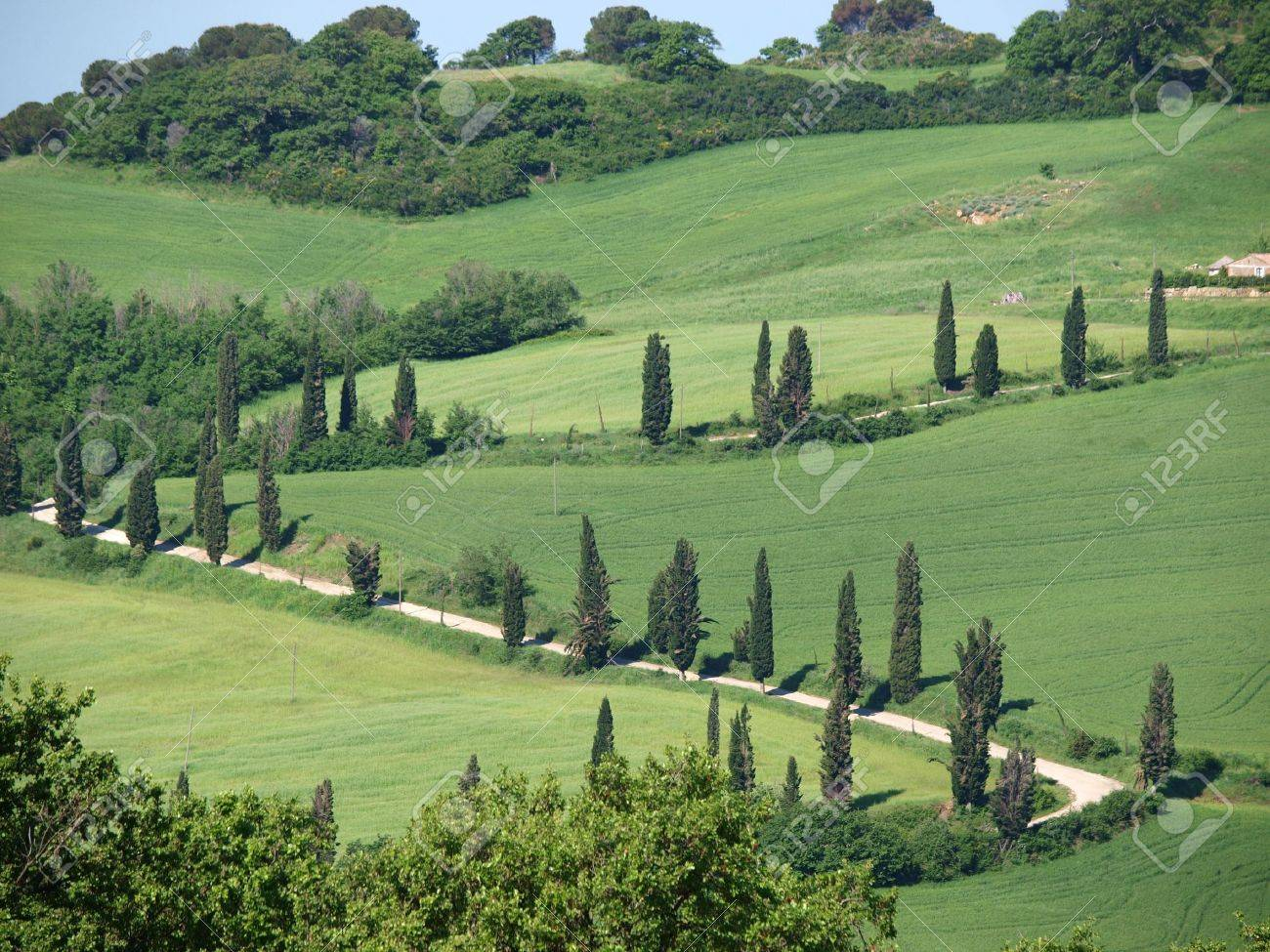 The landscape of the Val d�Orcia. Tuscany. Italiy Stock Photo - 7081912