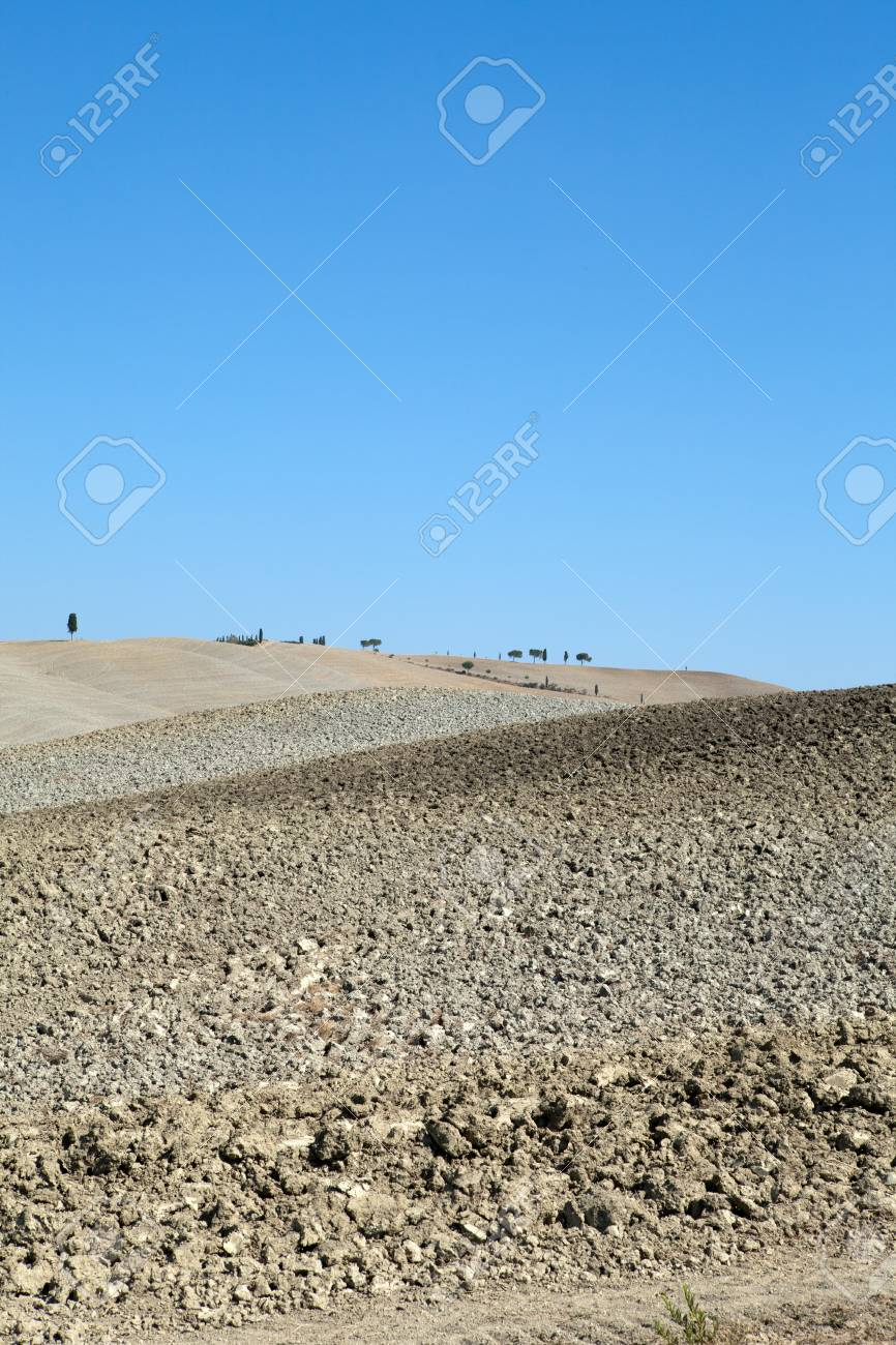 The landscape of the  Tuscany. Italy Stock Photo - 13038197
