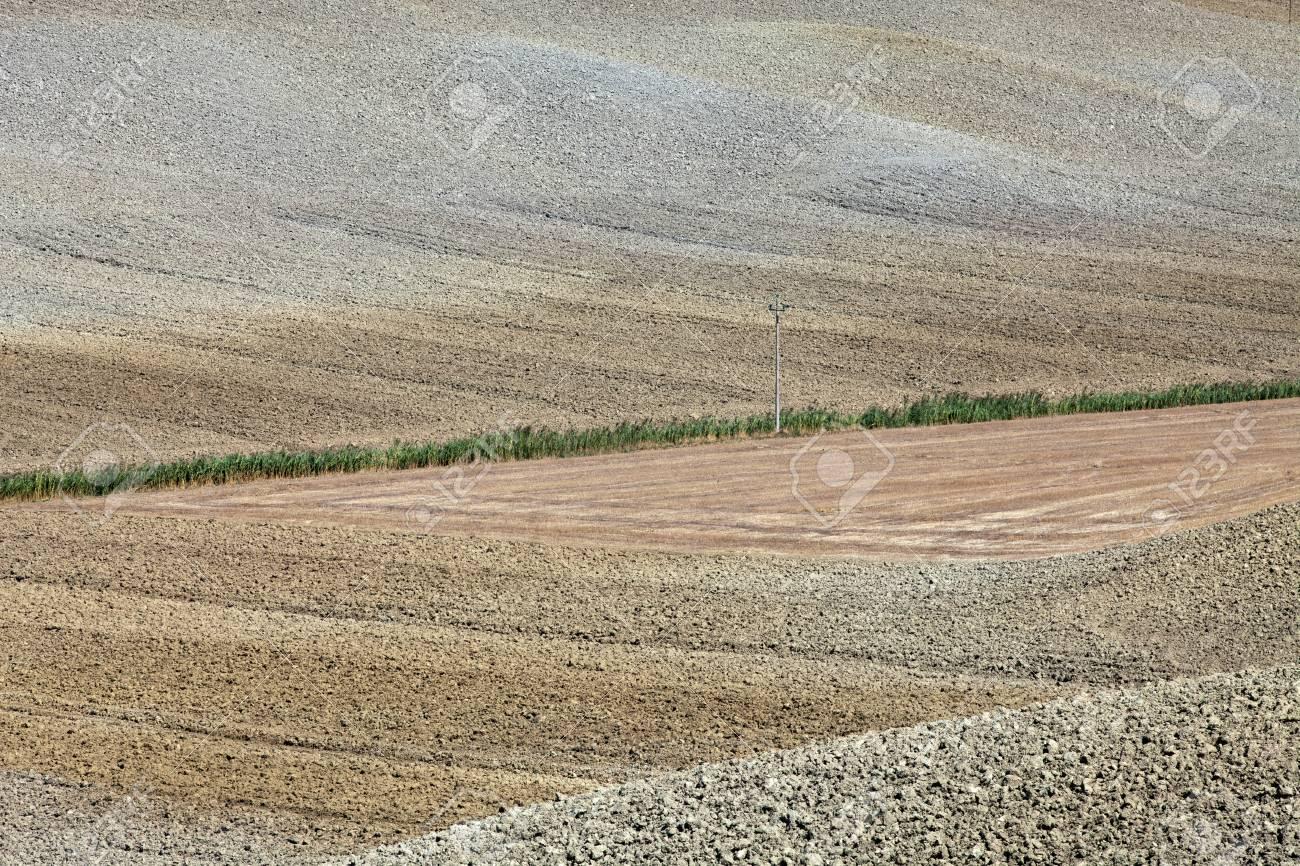 Crete Senesi - The landscape of the  Tuscany  Italy Stock Photo - 14982275