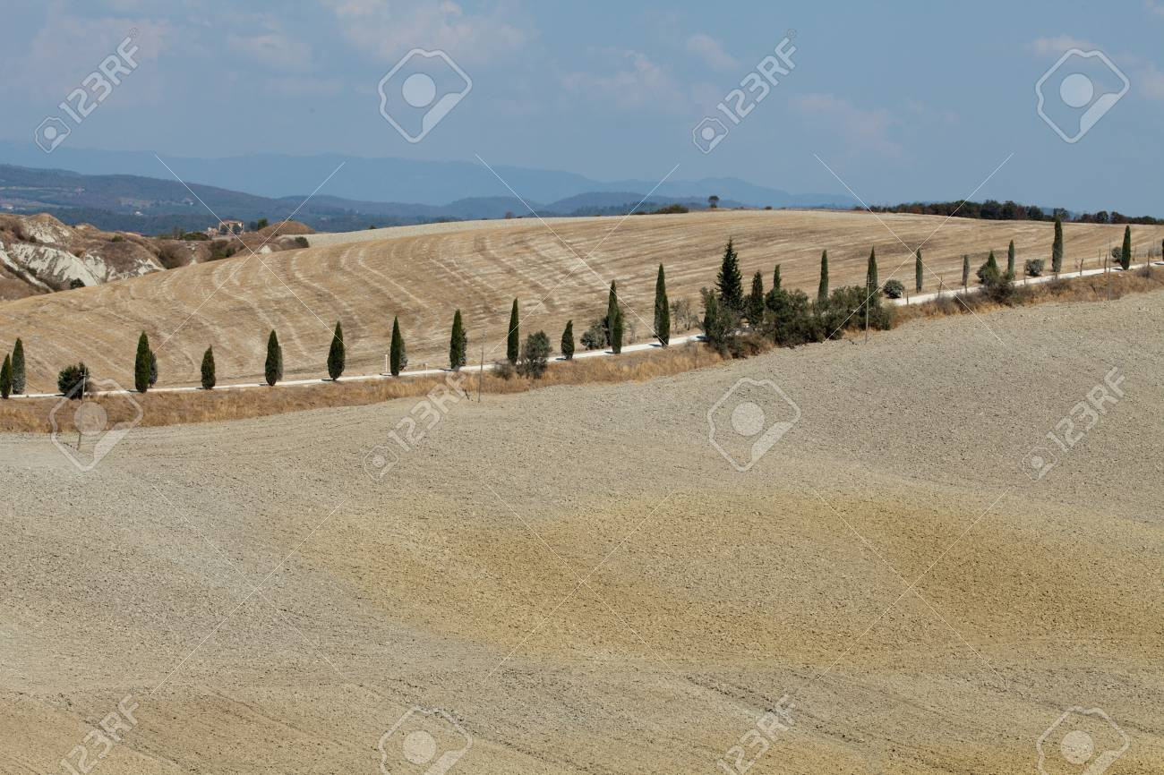 Crete Senesi - The landscape of the  Tuscany  Italy Stock Photo - 15151930