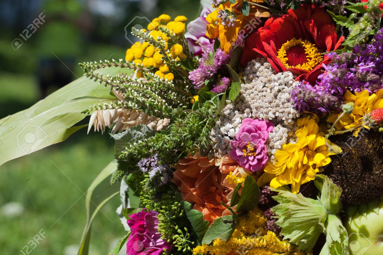 beautiful bouquets of flowers and herbs Stock Photo - 21733580