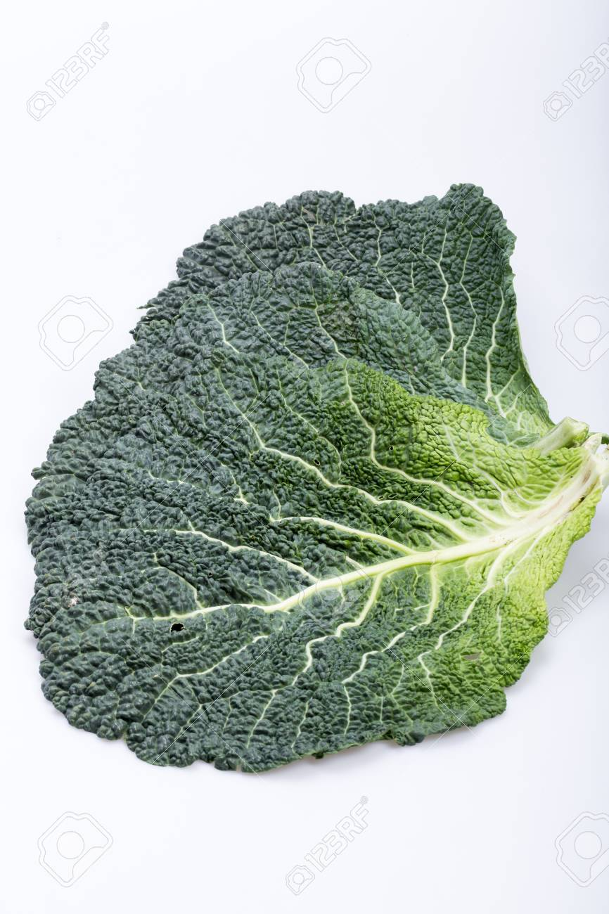 Fresh Savoy Cabbage Leaf As A Texture Stock Photo Picture And Royalty Free Image Image 54000966