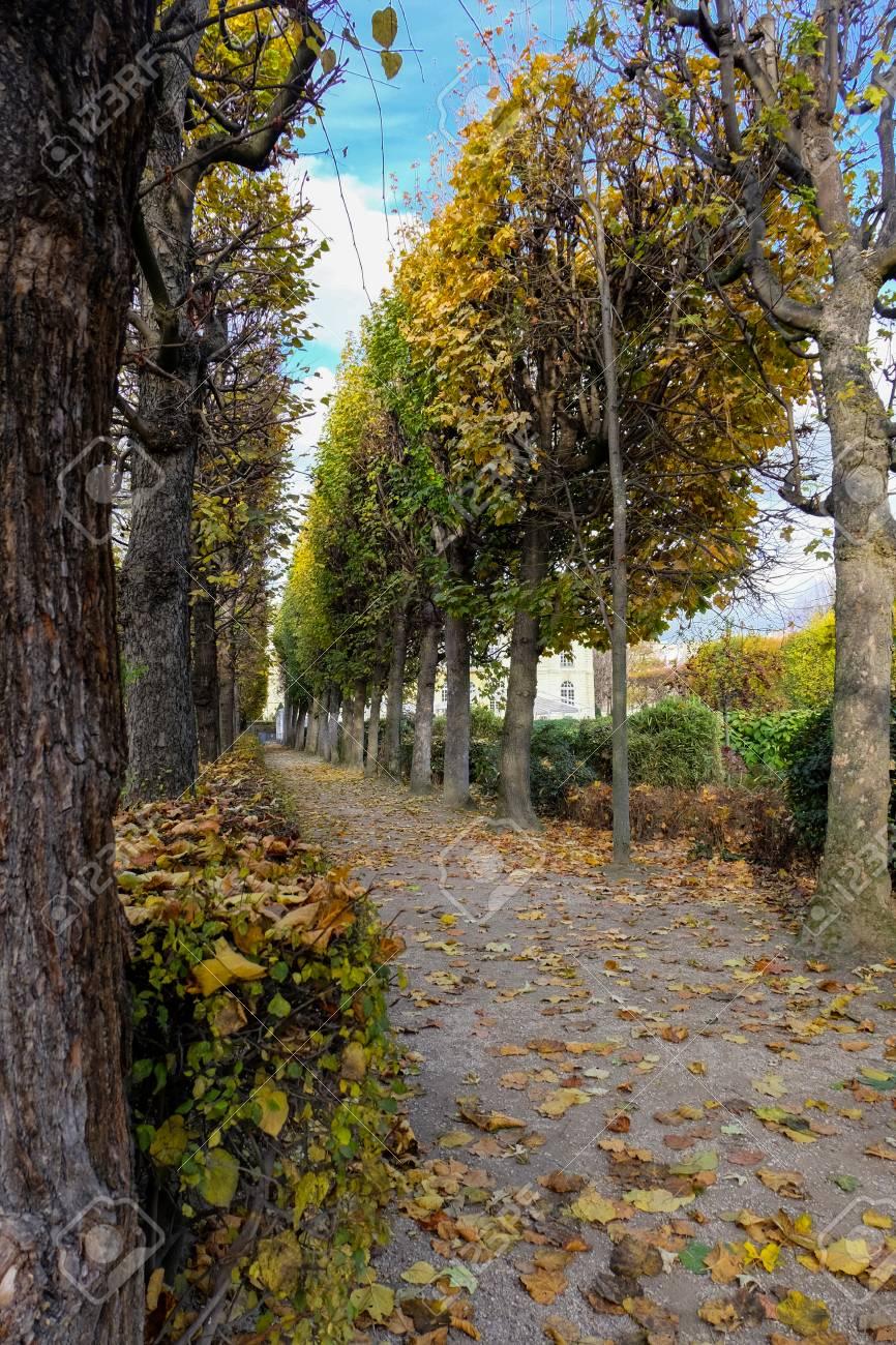 Paris, France - November 2017: Autumn In Paris. Garden At The ...