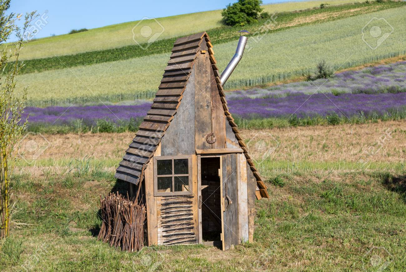 Small Wooden Hut In A Garden With The Flourishing Lavender Stock Photo    104362896