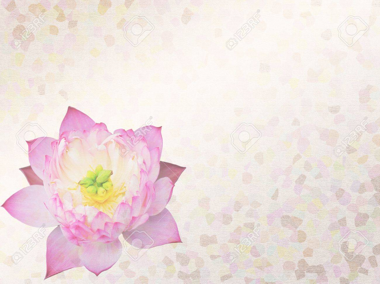 lotus and bamboo on Old antique vintage paper background Stock Photo - 12018217