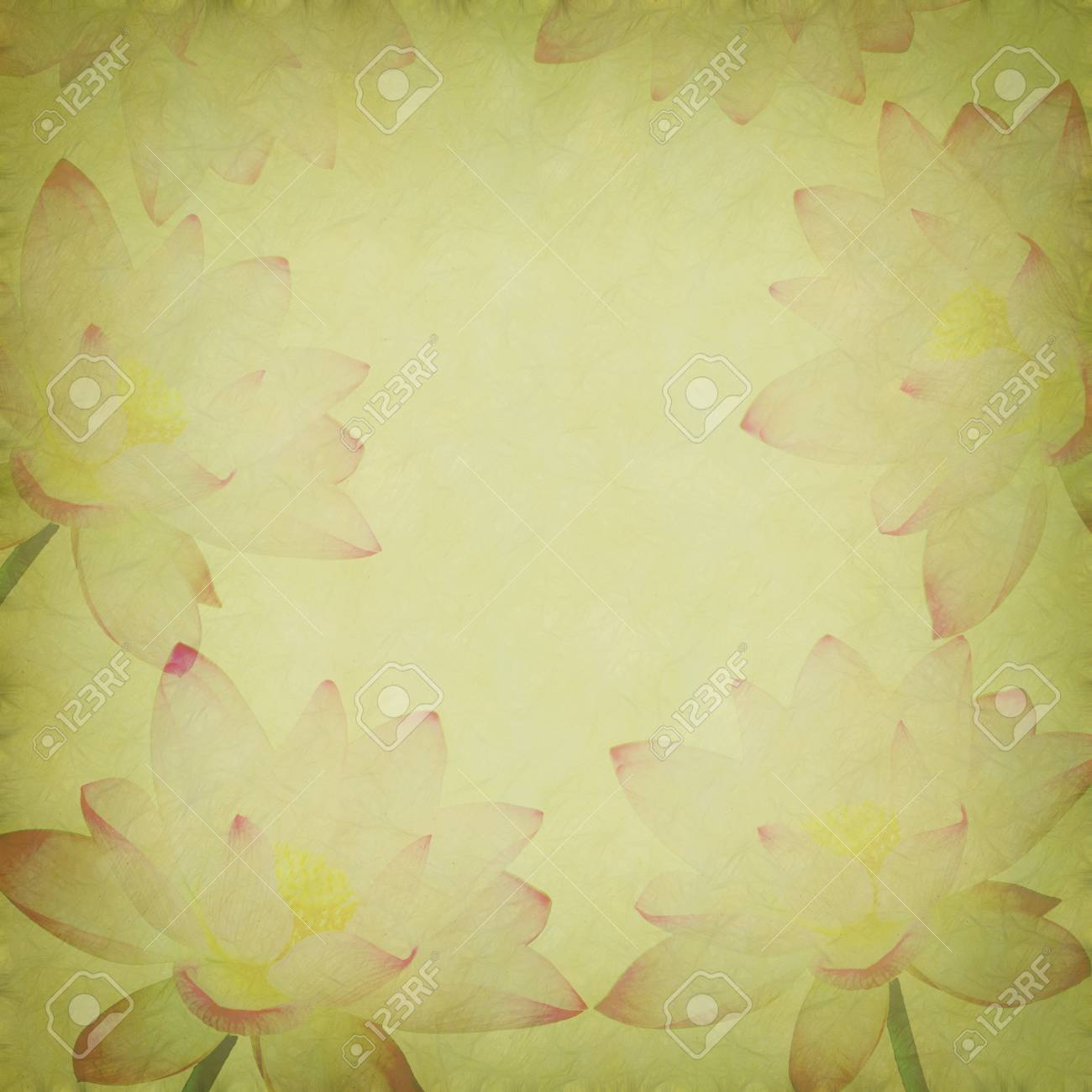 Water Lily on grunge textured background Stock Photo - 14447917