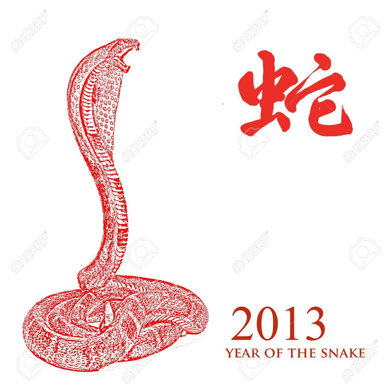Year of the snake 2013 characteristic Stock Photo - 16215850