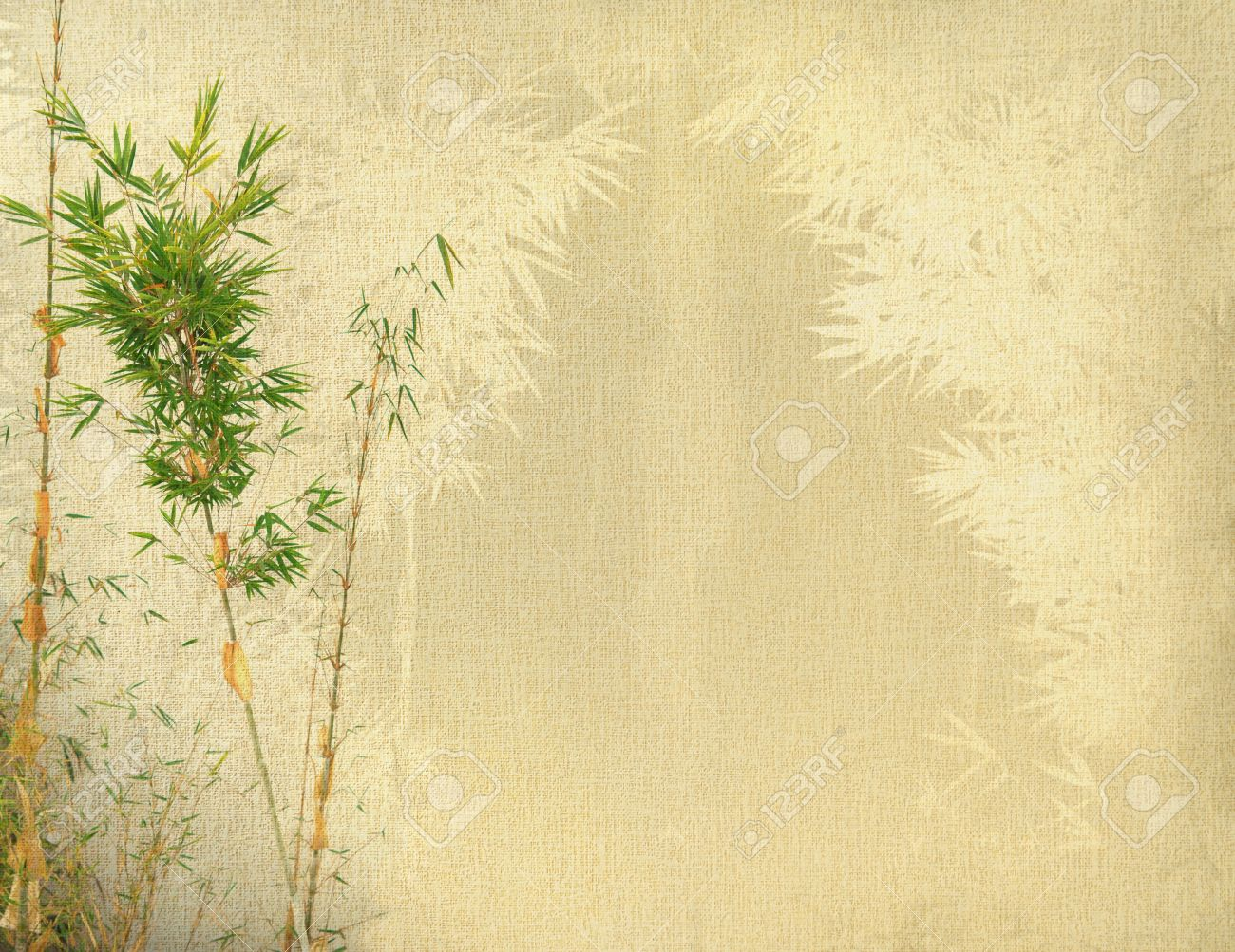 Chinese Bamboo Trees With Texture Of Handmade Paper Stock Photo ...