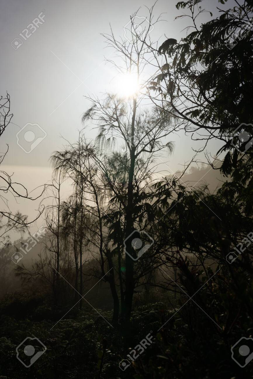 bueutiful moment morning view in ijen crater - 153270284