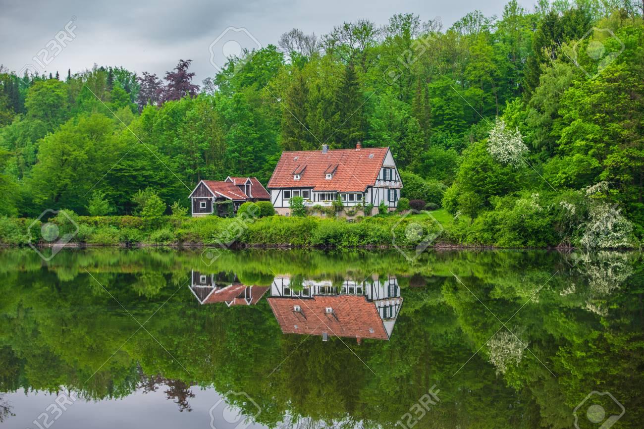 Pond in Teutoburg Forest nearby Externsteine rocks, Germany . - 117911739