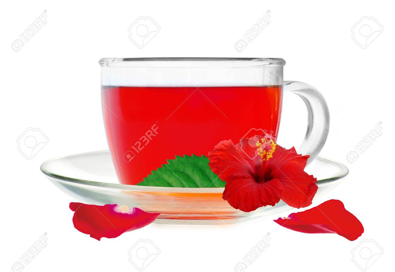 Glass cup hibiscus tea with hibiscus flower and petals isolated on white background Stock Photo - 14901105