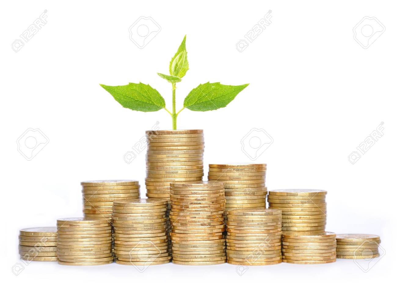Many coins in column and green plant isolated on white background Stock Photo - 17859719
