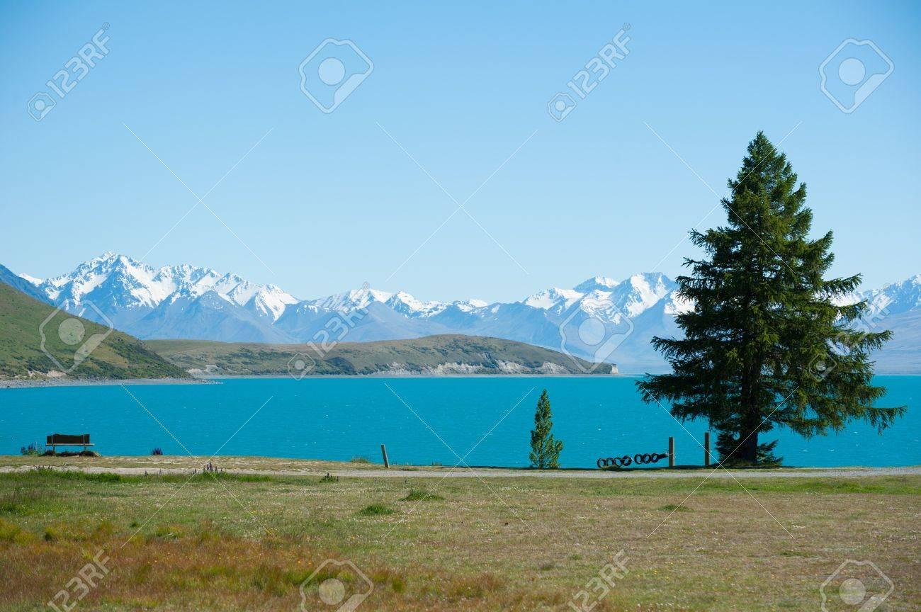 Beautiful landscape of tree, lake and snow mountain at Lake Tekapo in South Island, New Zealand Stock Photo - 17306499