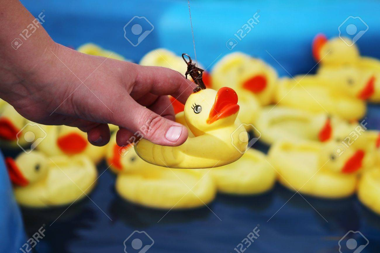 Woman Catches Duck From Many Yellow Rubber Ducks Floating In.. Stock ...