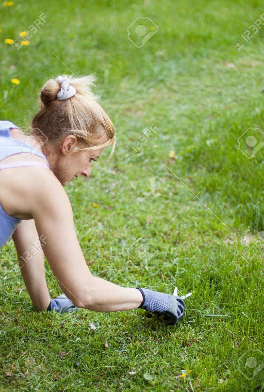 meticulous lawn mowing with scissors in  a large field Stock Photo - 13772334