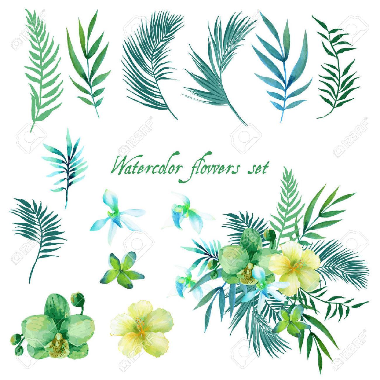 Watercolor floral set for your design. - 42650986