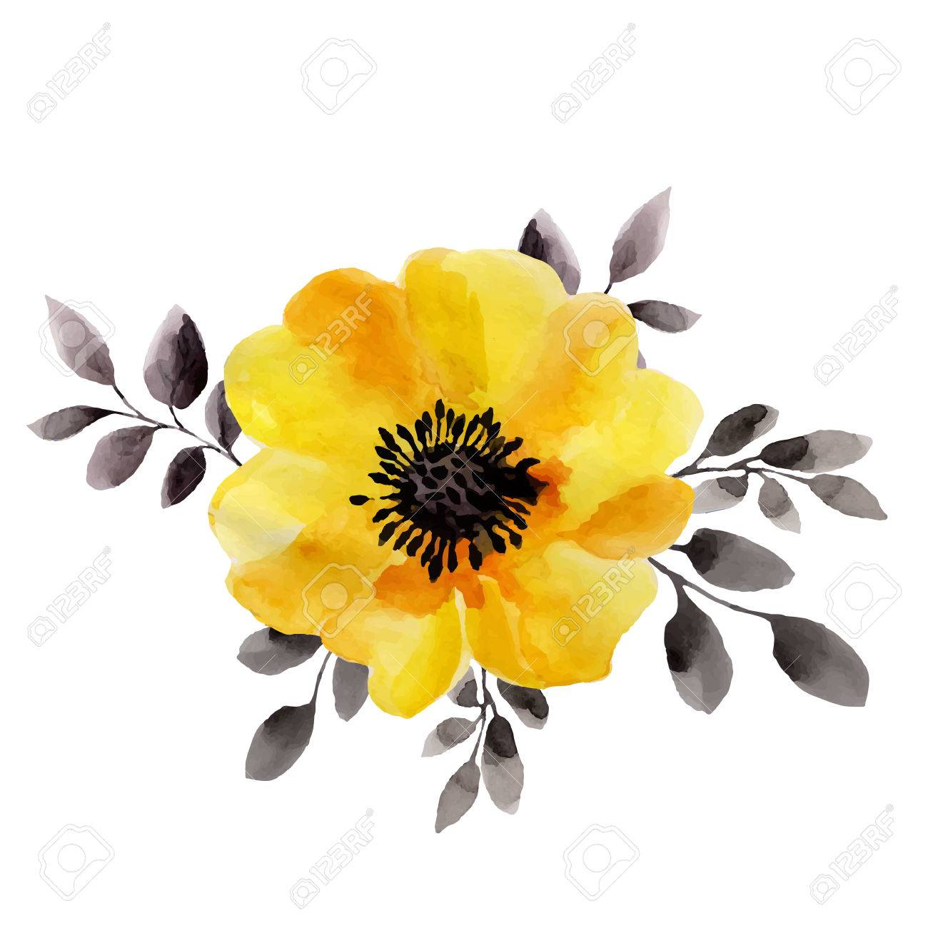 Watercolor Illustrations Of Yellow Flower Isolated On White