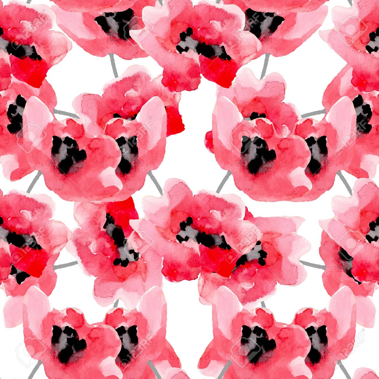 Watercolor Flowers Red Poppy Seamless Pattern. Bright Colors ...