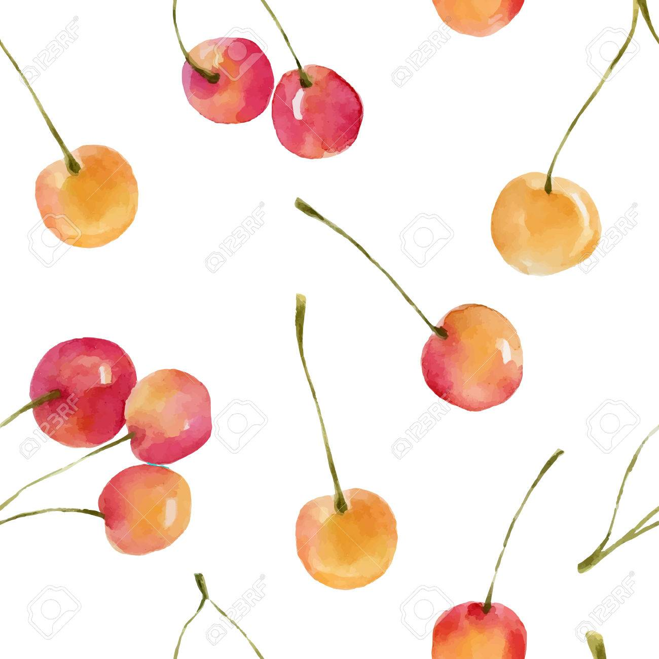 Watercolor cherries isolated on white background. Organic food illustration. - 63721052