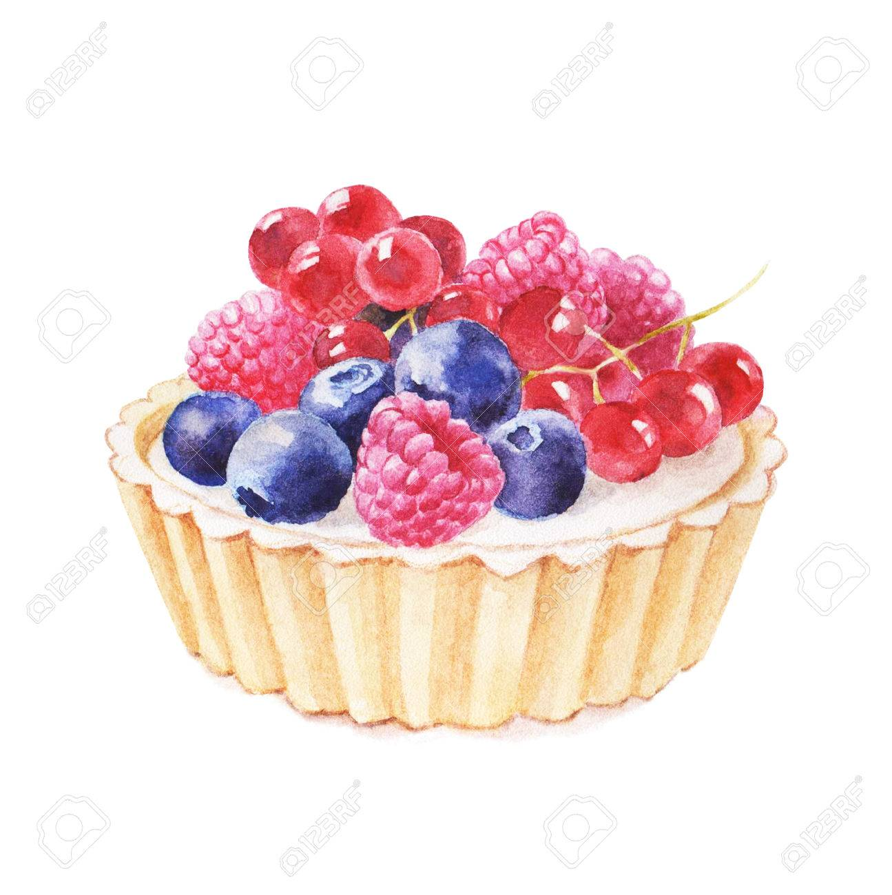 Tartlet with fruit hand drawn watercolor illustration on white background. It can be used for card, postcard, cover, invitation, wedding card, birthday card. - 67669953