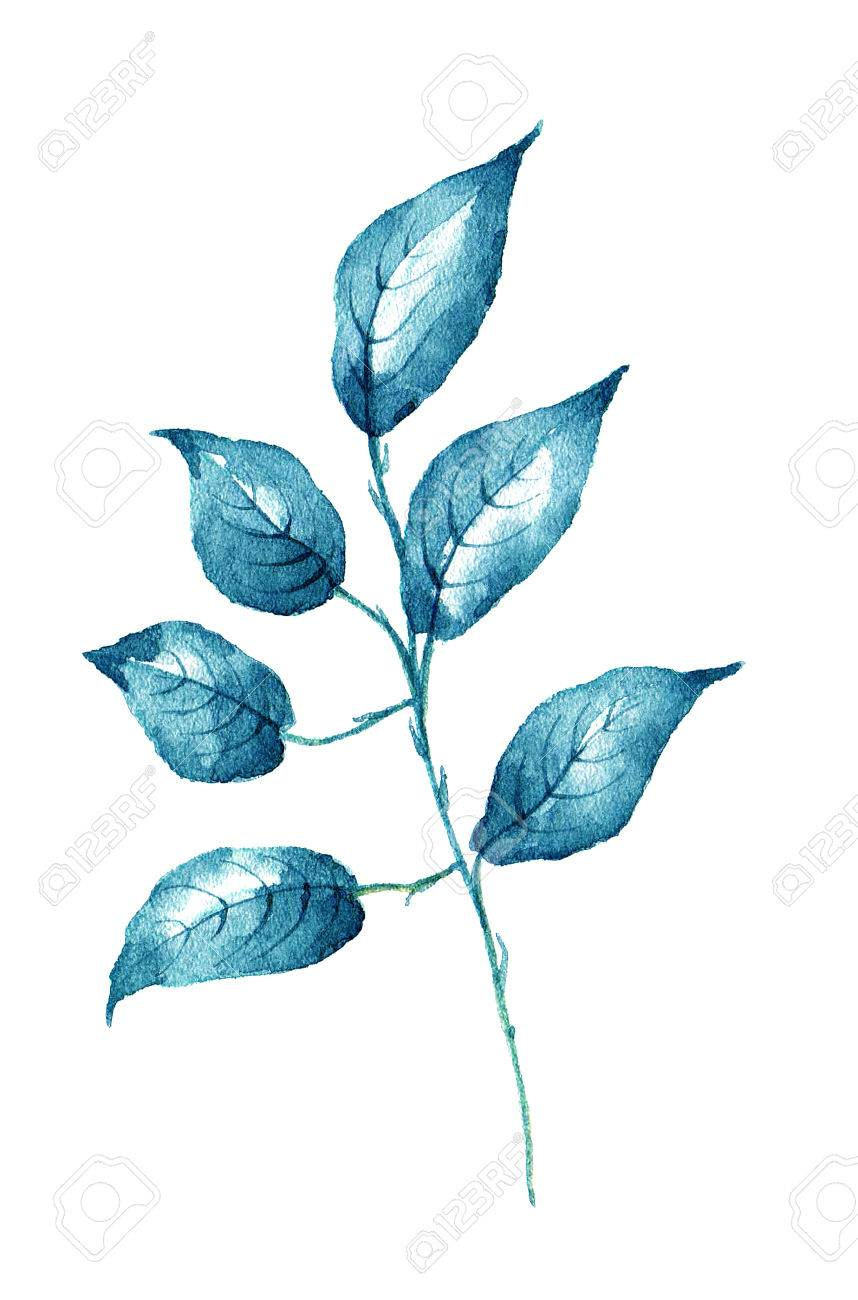 Watercolor leaf on white background design element. It can be used for card, postcard, cover, invitation, birthday card. - 67674012