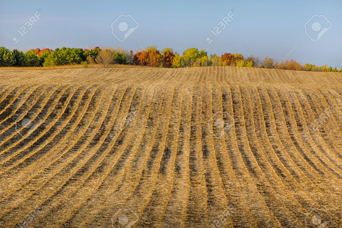 Furrowed Plowed Field in Late Autumn Panorama Stock Photo - 15904522