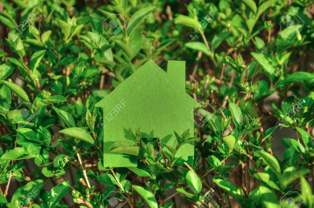 Concept De Maison Ecologique Dans Une Plante Verte Icone De La Maison Verte Eco Dans La Nature Banque D Images Et Photos Libres De Droits Image 55981704