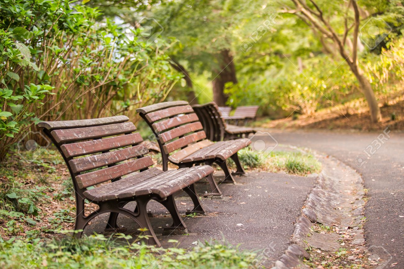 Background Of Chair In The Garden With Sunshine. Stock Photo   35004806