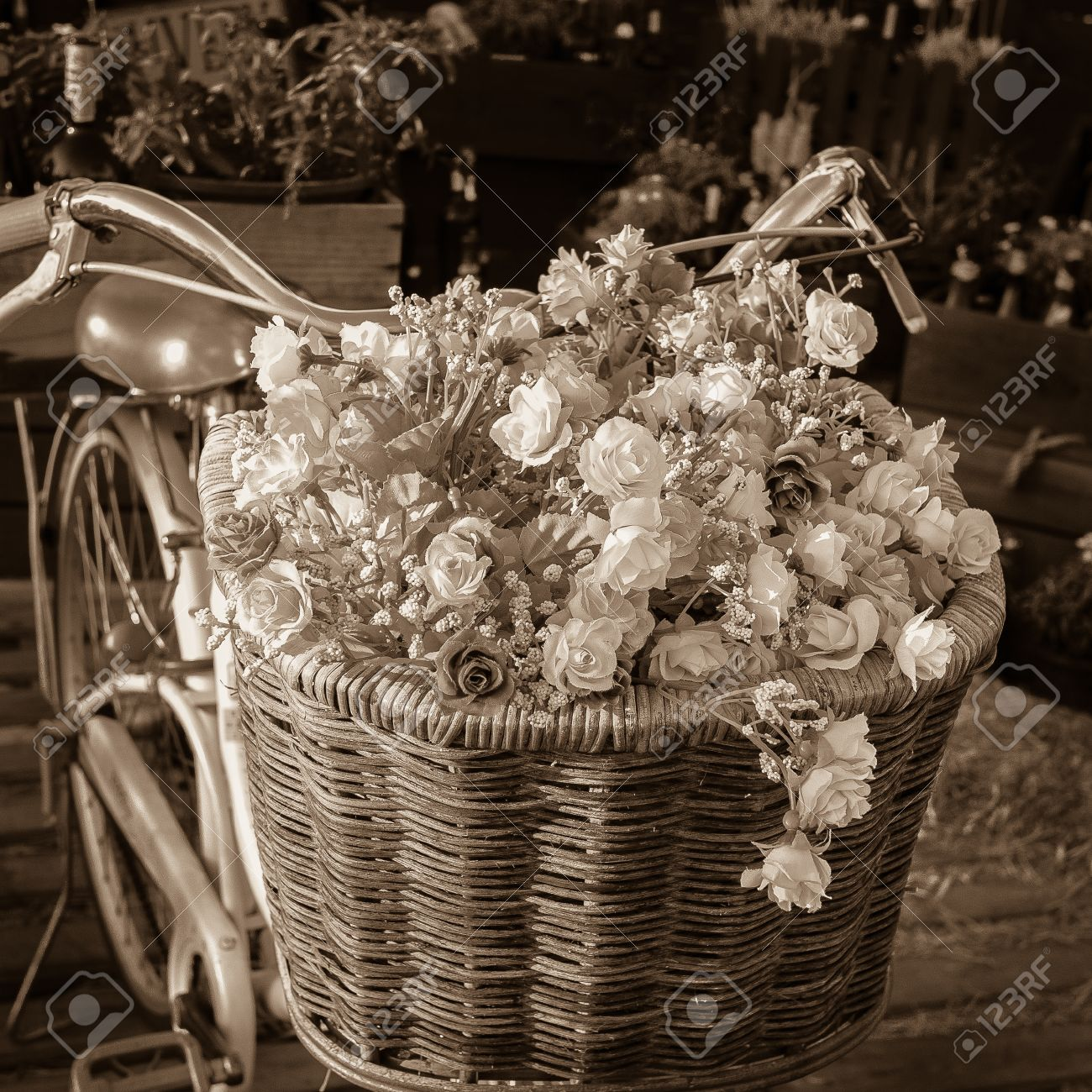 Vintage Bicycle Has Beautiful Flowers In A Basket On The Front Stock Photo Picture And Royalty Free Image Image 23937477