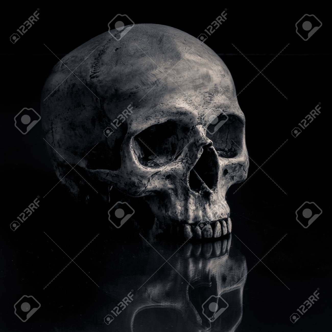 Sideview of human skull open mouth on isolated black background