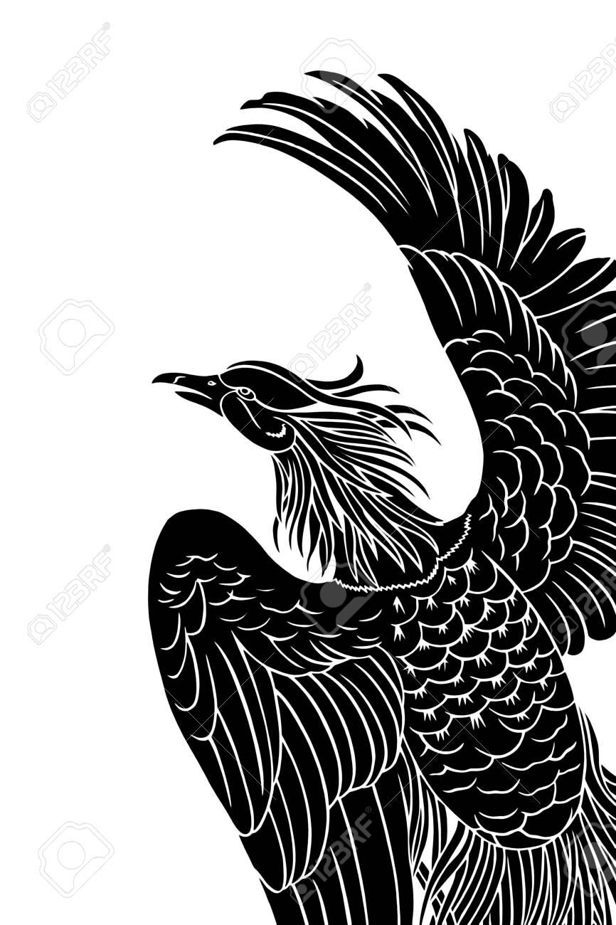 Black eagle isolated on white Stock Photo - 17687975
