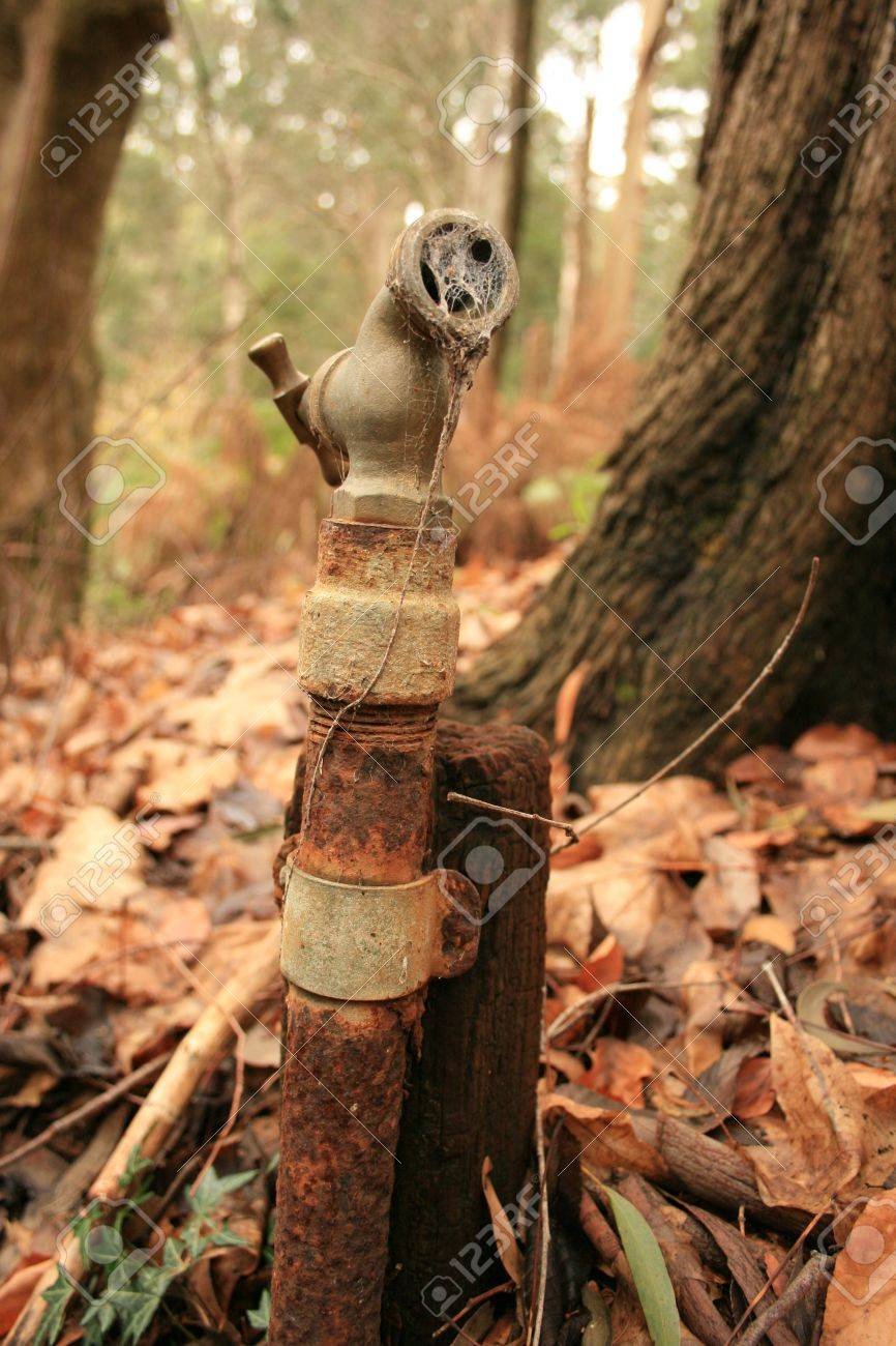 Old Rusty Garden Faucet In Garden Stock Photo, Picture And Royalty ...