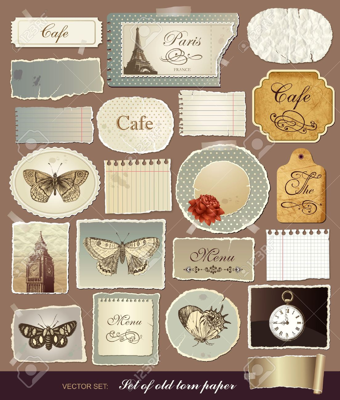 Collection of various vintage elements with old papers and the torn edges Stock Vector - 10756998