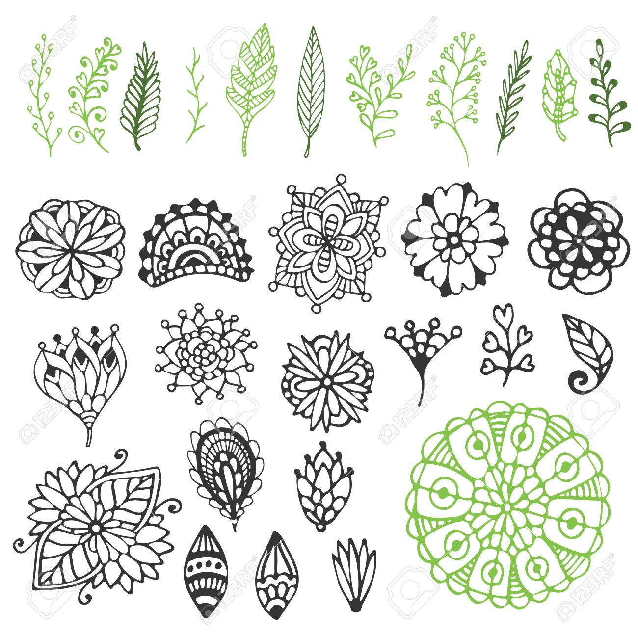 Zentangle Nature Collection Hand Drawn Vector Illustration With