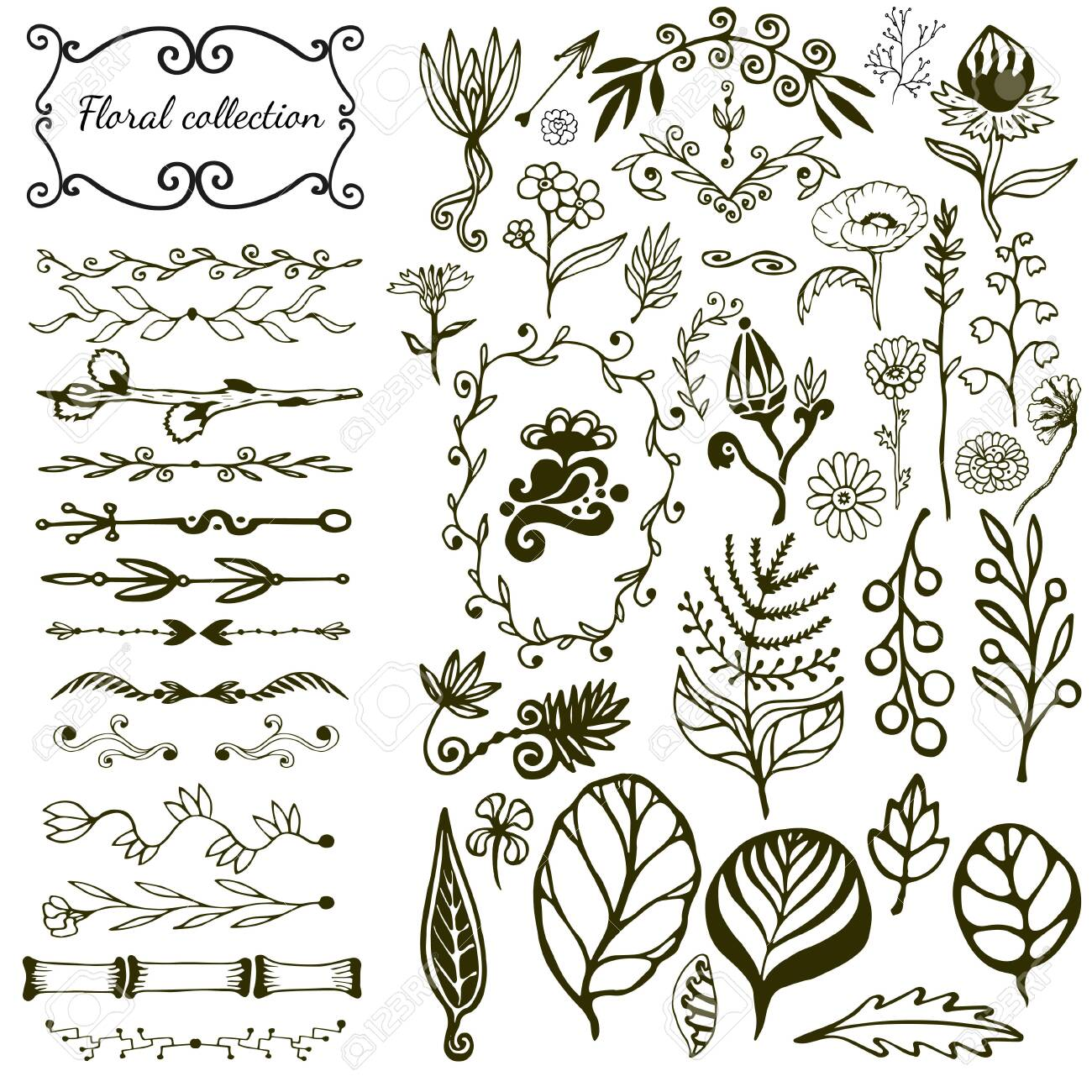 Hand drawn floral big set with wild flowers, leaves, swirls, border. Vector with nature elements collection for design decoration - 141033630