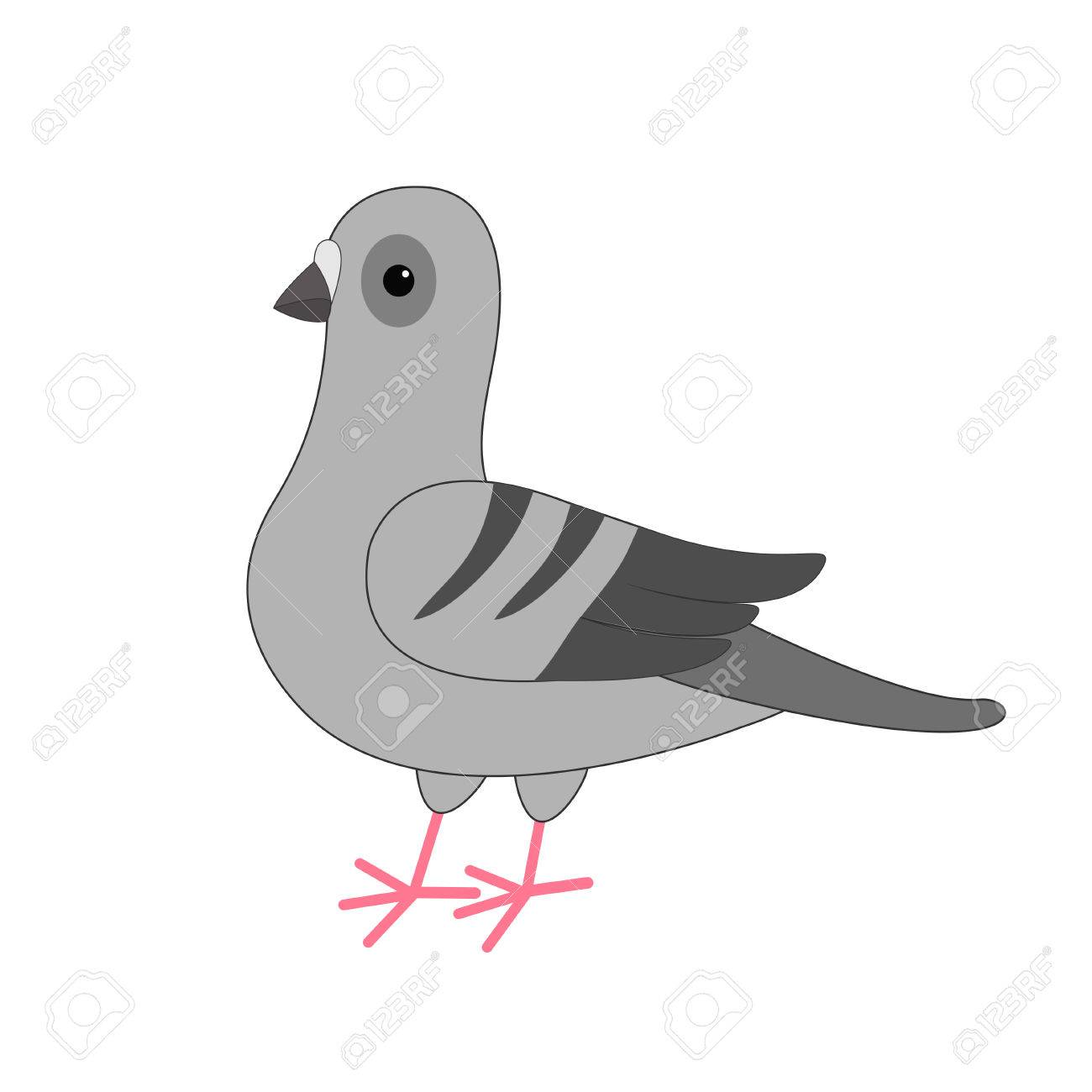 Bird Dove Gris Pigeon Personnage De Dessin Animé Mignon Sur Fond