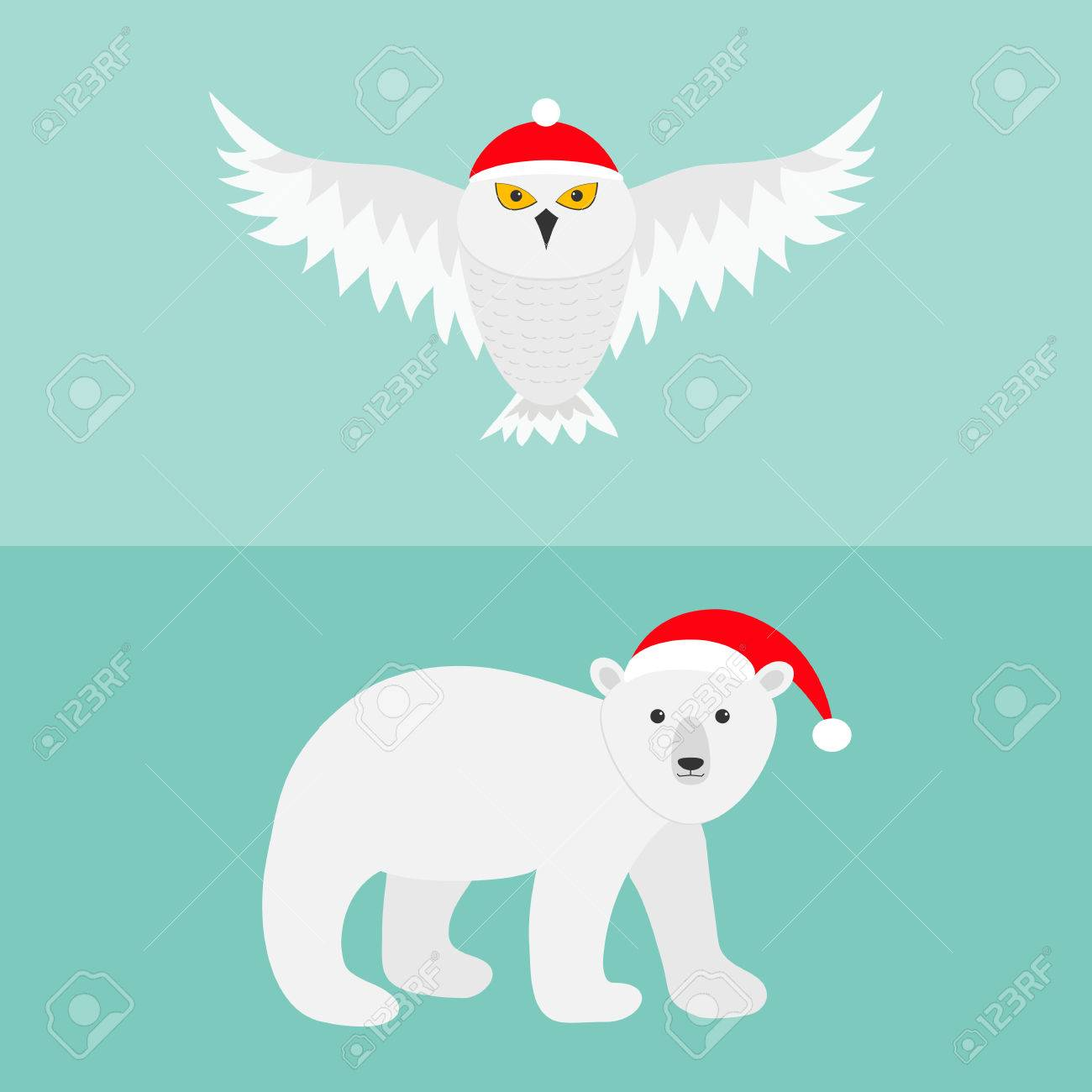 Hibou Blanc Milou Ours Polaire Red Hat Pere Noel Voler Oiseau
