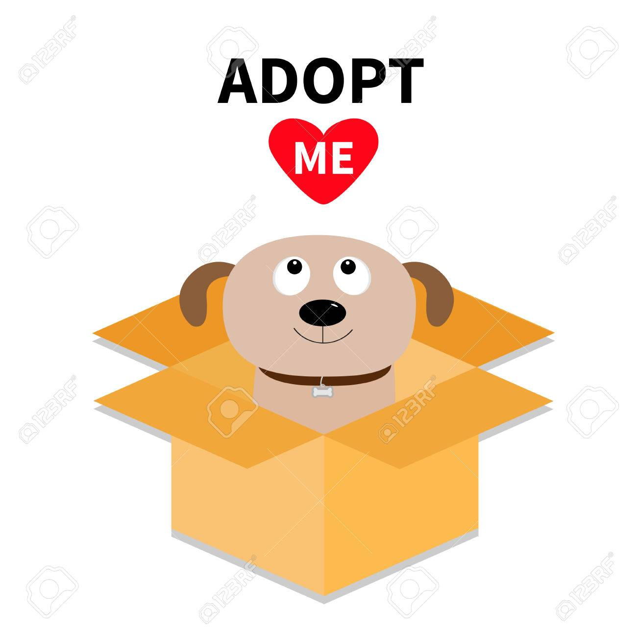 Adopte moi. Ne pas acheter. Chien à l'intérieur de la boîte en carton ouverte. Adoption d'animaux. Chiot chiot levant les yeux vers le coeur rouge.