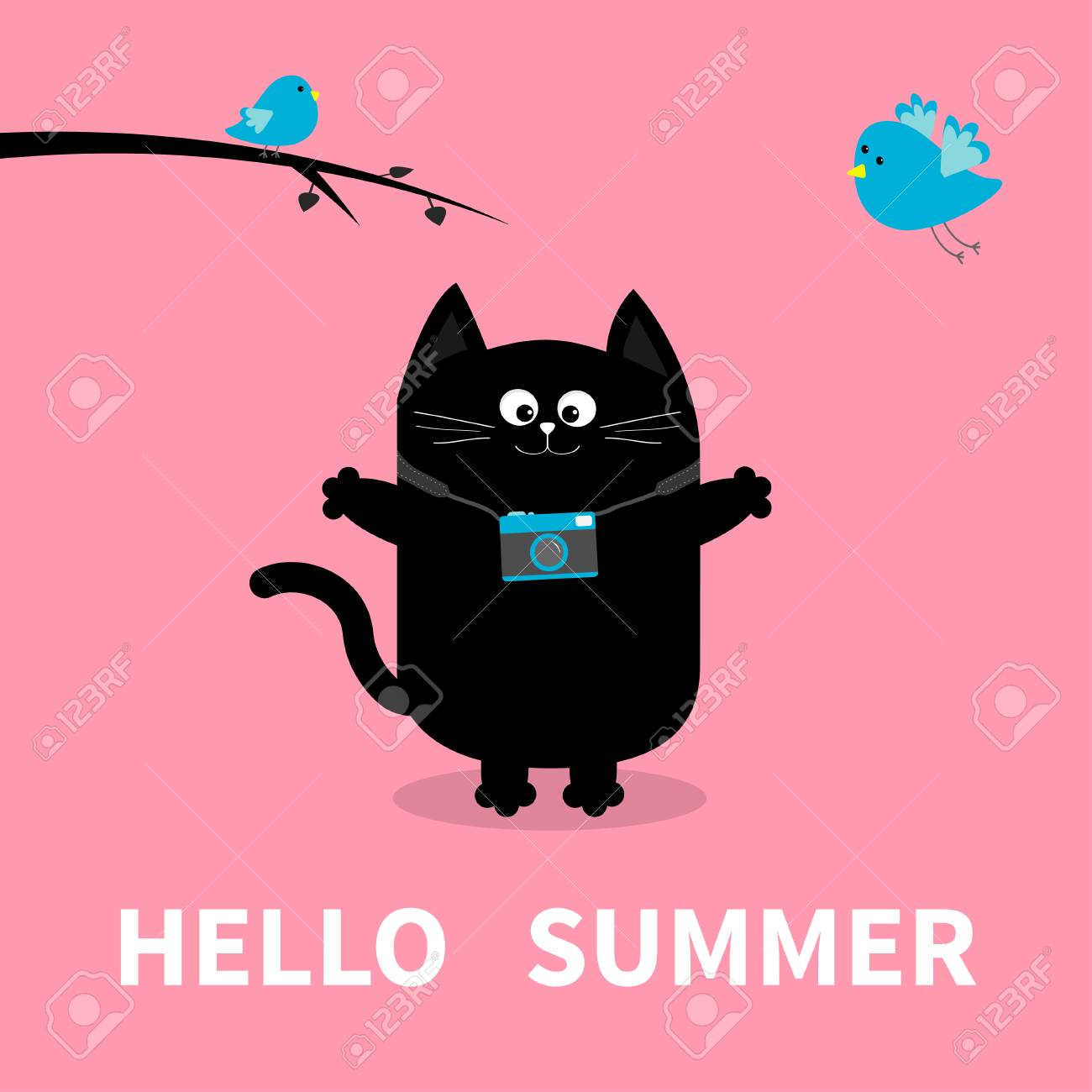 Hello Summer. Black Cat. Photo Camera, Bird, Branch. Cute Cartoon Character