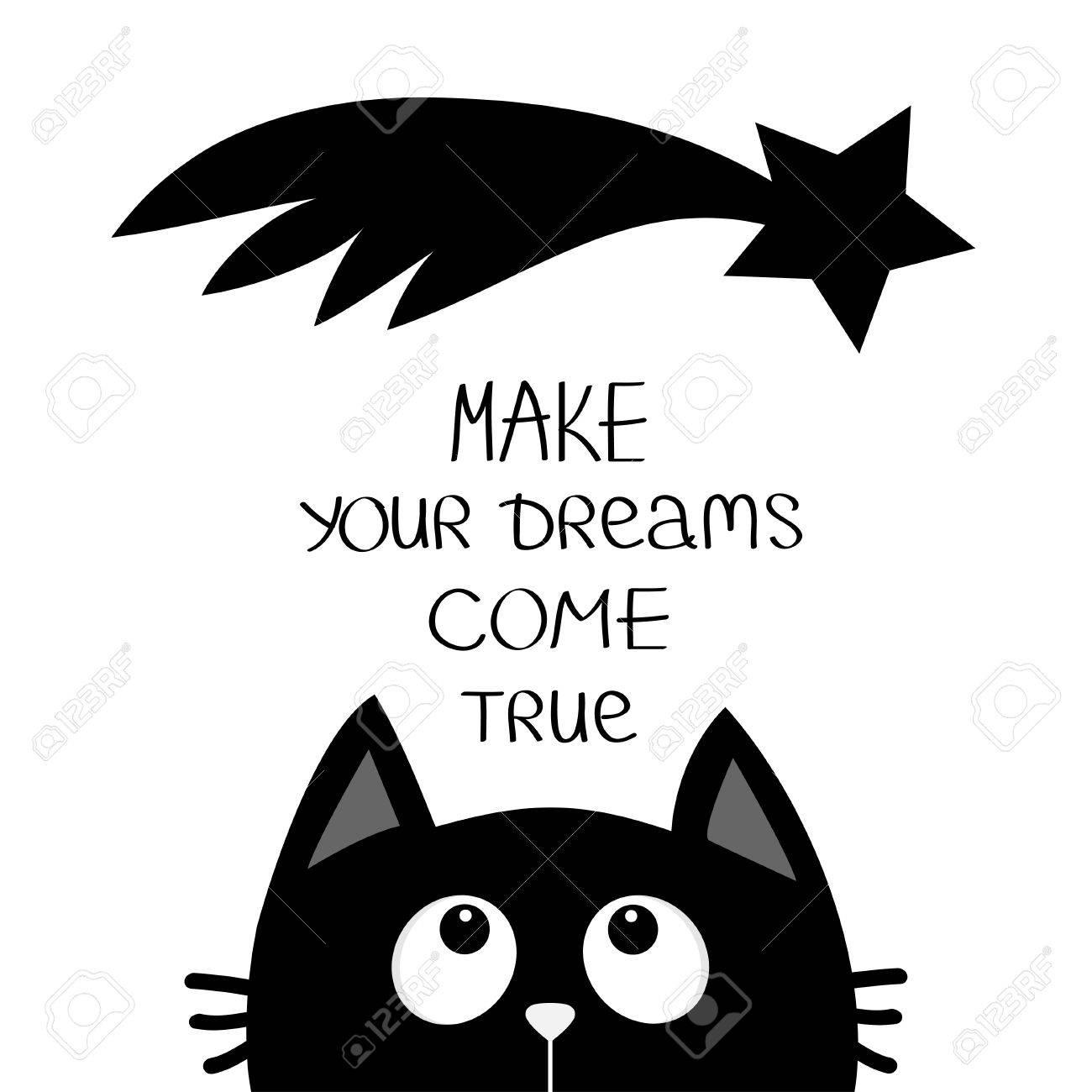Chat Noir Regardant La Comete Etoile Fait De Tes Reves Une Realite