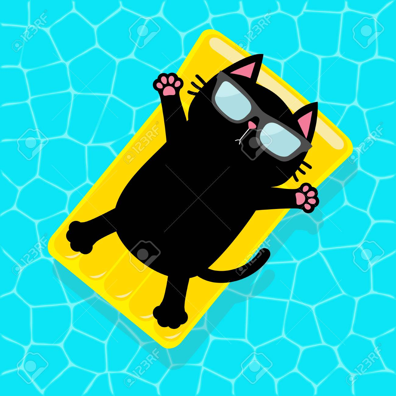 Swimming pool. Black cat floating on yellow pool float water..
